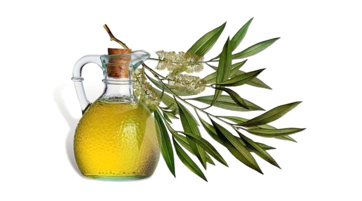 herbal oils for treating scalp infections