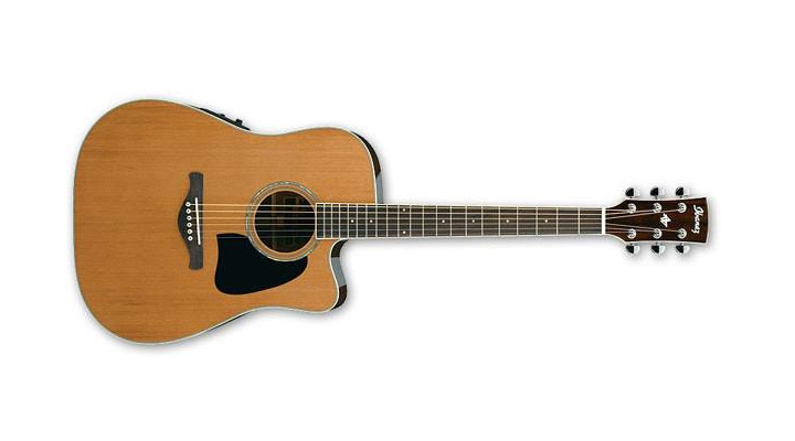 best affordable acoustic guitar