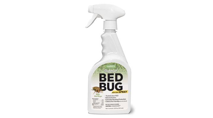 best bug spray