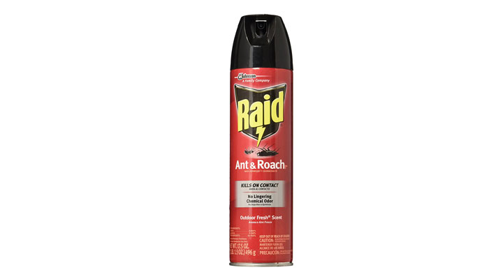 best bug and insect killer spray