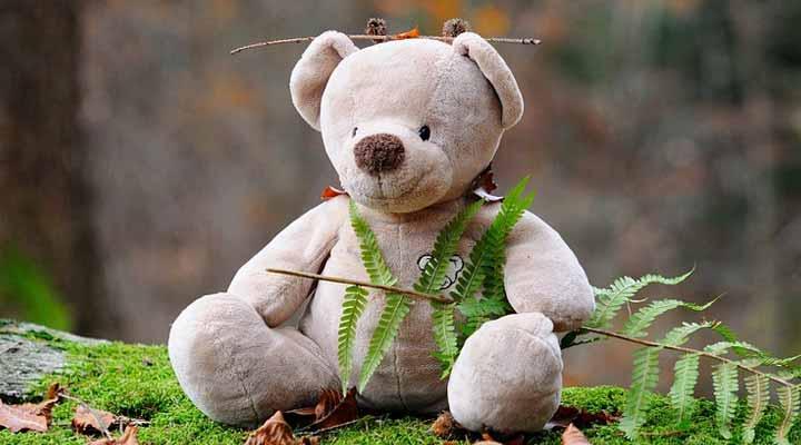Teddy bear gift fro a female friend
