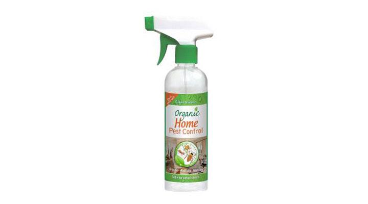 best home paste control spray