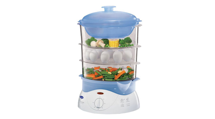 best electric steamer to buy in india