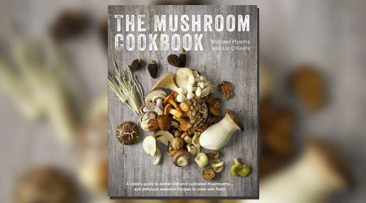 best cookbook for housewife