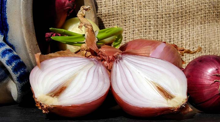Prevent Hair Loss using onion juice